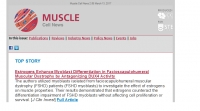 Muscle Cell News